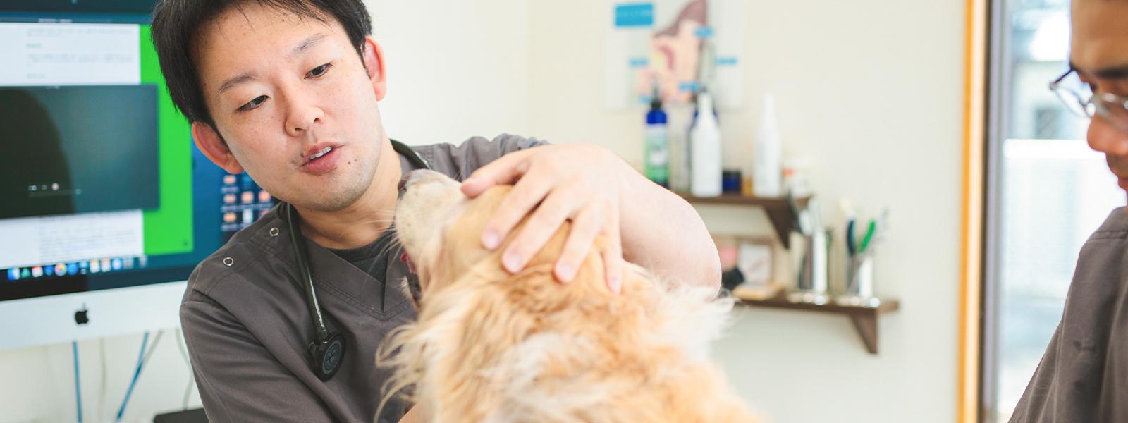 ペットの健康を守るため病気と真摯に向き合います